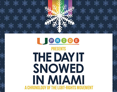 The Day It Snowed in Miami